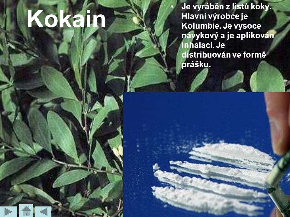 Kokain Je vyráběn z listů koky. Hlavní výrobce je Kolumbie. Je vysoce návykový a je aplikován inhalací. Je distribuován ve formě prášku.