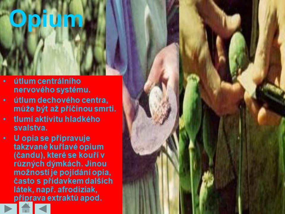 Opium útlum centrálního nervového systému.útlum dechového centra, může být až příčinou smrti.