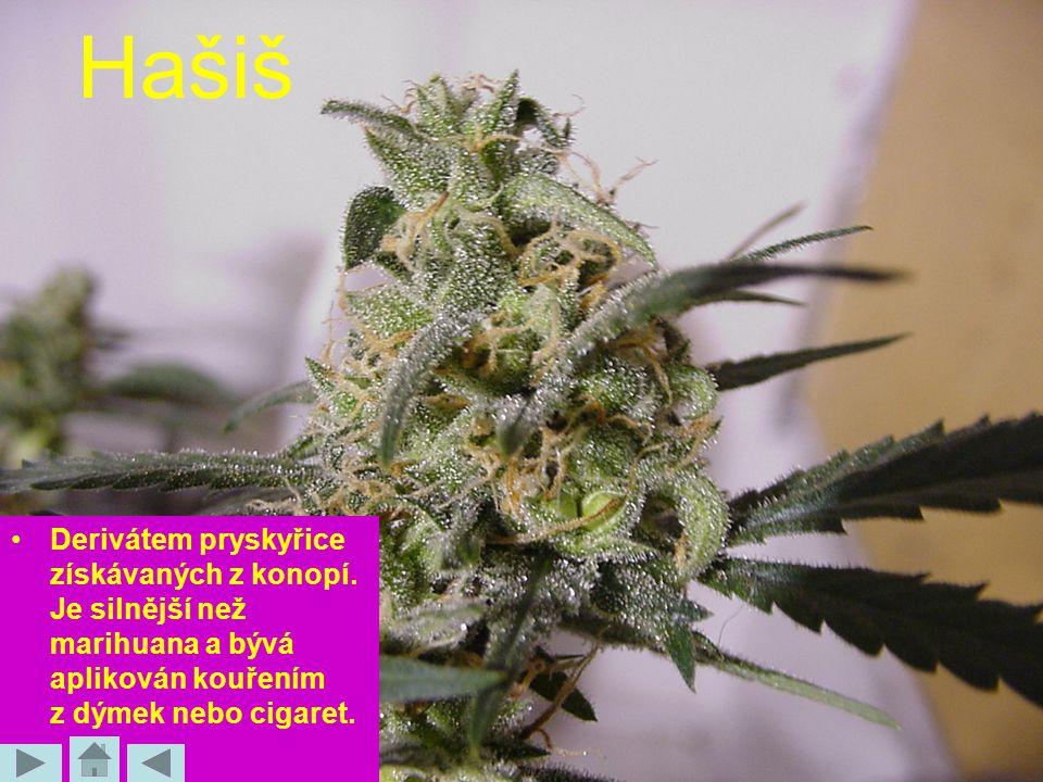 Hašiš Derivátem pryskyřice získávaných z konopí. Je silnější než marihuana a bývá aplikován kouřením z dýmek nebo cigaret.