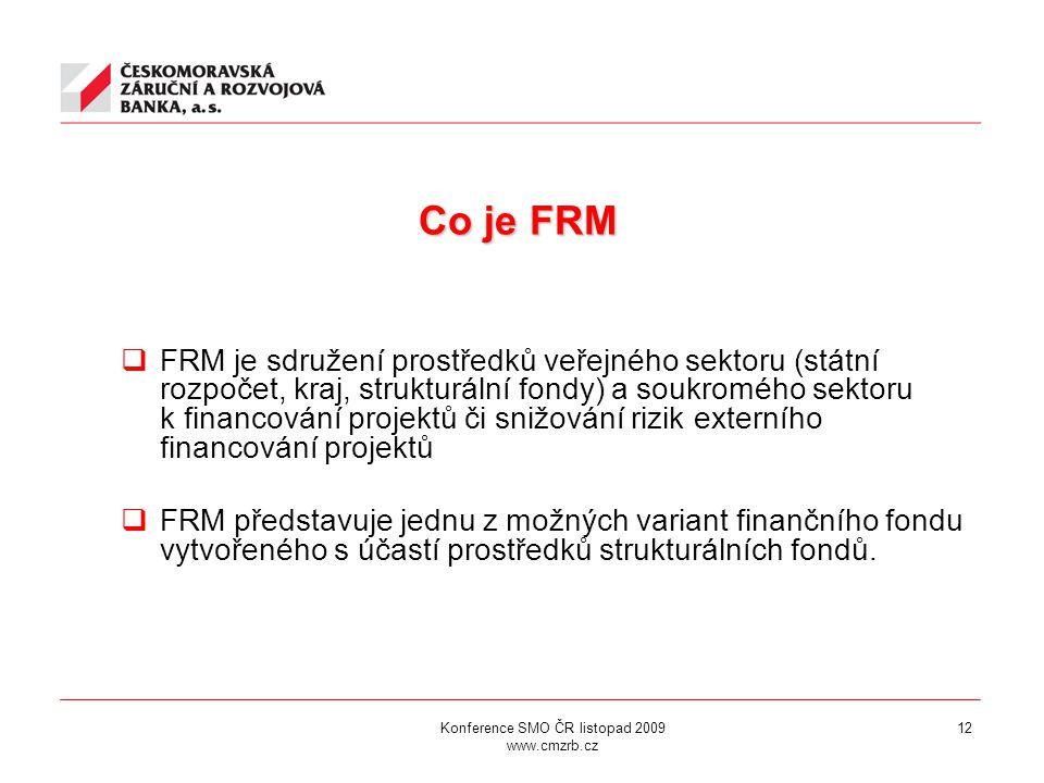 12 Co je FRM  FRM je sdružení prostředků veřejného sektoru (státní rozpočet, kraj, strukturální fondy) a soukromého sektoru k financování projektů či snižování rizik externího financování projektů  FRM představuje jednu z možných variant finančního fondu vytvořeného s účastí prostředků strukturálních fondů.