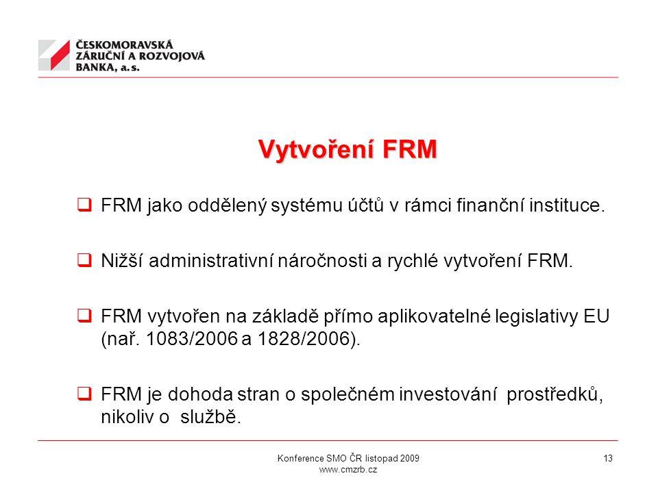 13 Vytvoření FRM Vytvoření FRM  FRM jako oddělený systému účtů v rámci finanční instituce.