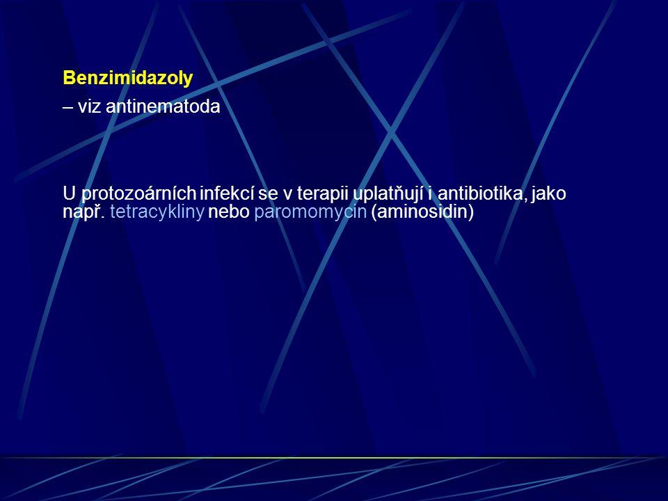 Benzimidazoly – viz antinematoda U protozoárních infekcí se v terapii uplatňují i antibiotika, jako např. tetracykliny nebo paromomycin (aminosidin)