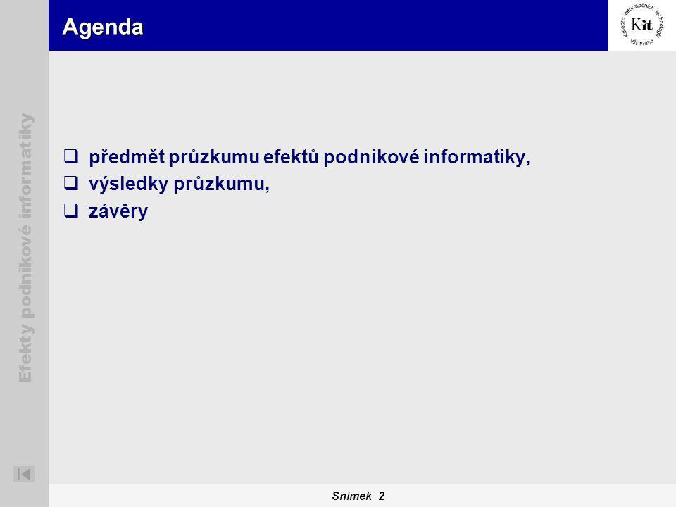 Snímek 2 Efekty podnikové informatiky Agenda  předmět průzkumu efektů podnikové informatiky,  výsledky průzkumu,  závěry