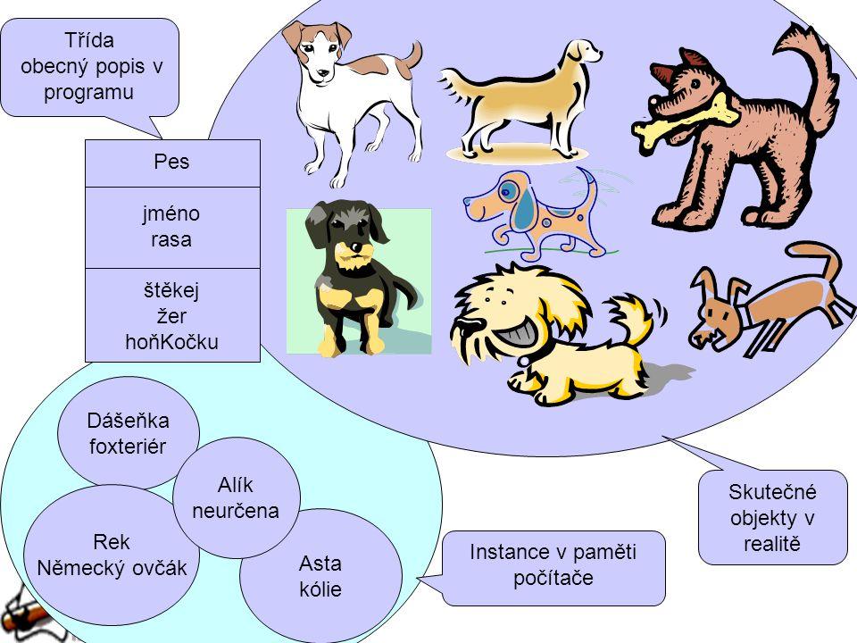 Pes jméno rasa štěkej žer hoňKočku Dášeňka foxteriér Rek Německý ovčák Asta kólie Alík neurčena Skutečné objekty v realitě Instance v paměti počítače Třída obecný popis v programu