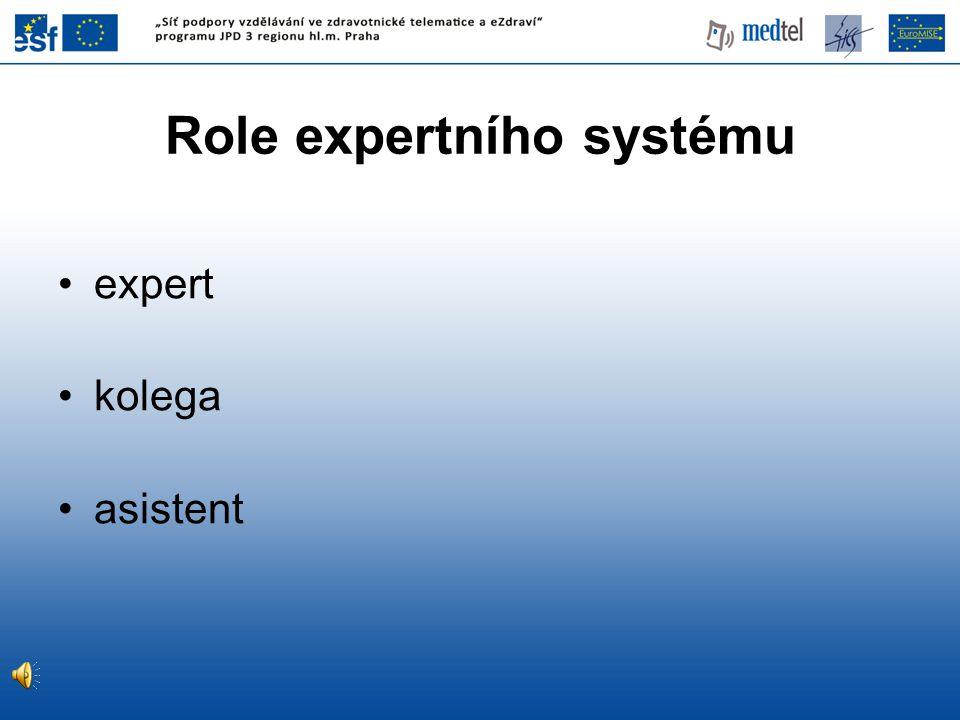 Role expertního systému expert kolega asistent
