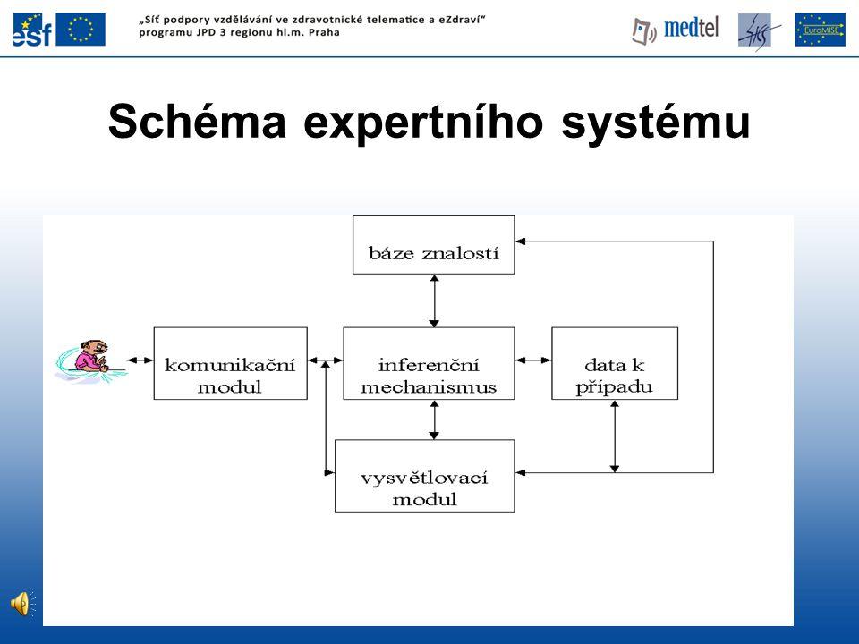 Schéma expertního systému