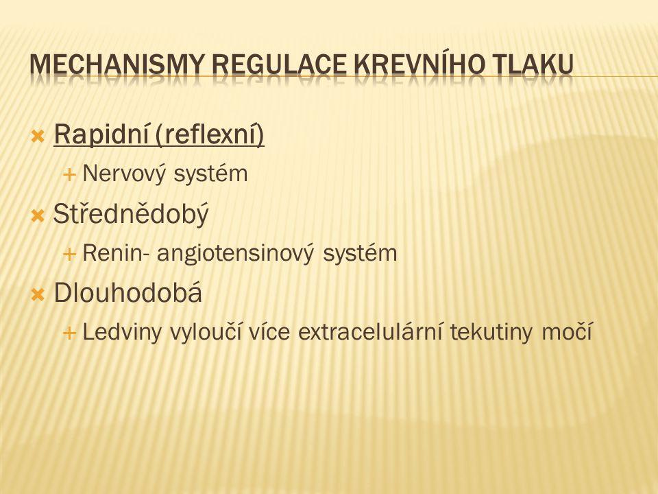  Rapidní (reflexní)  Nervový systém  Střednědobý  Renin- angiotensinový systém  Dlouhodobá  Ledviny vyloučí více extracelulární tekutiny močí