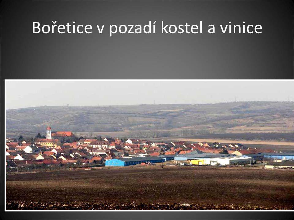 Odjetí z obce Vrbice a přijetí do obce Bořetice… Pohled na obec