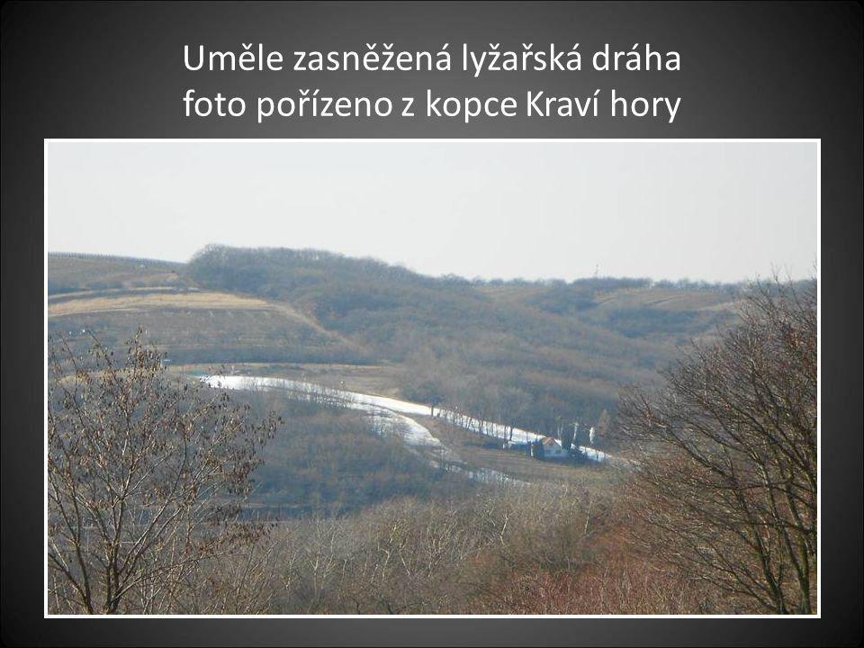 Rozhledna na kopci Kraví hory výška 17 metrů