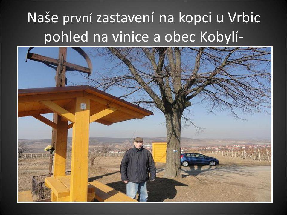 Pohled na vinice a obec Kobylí
