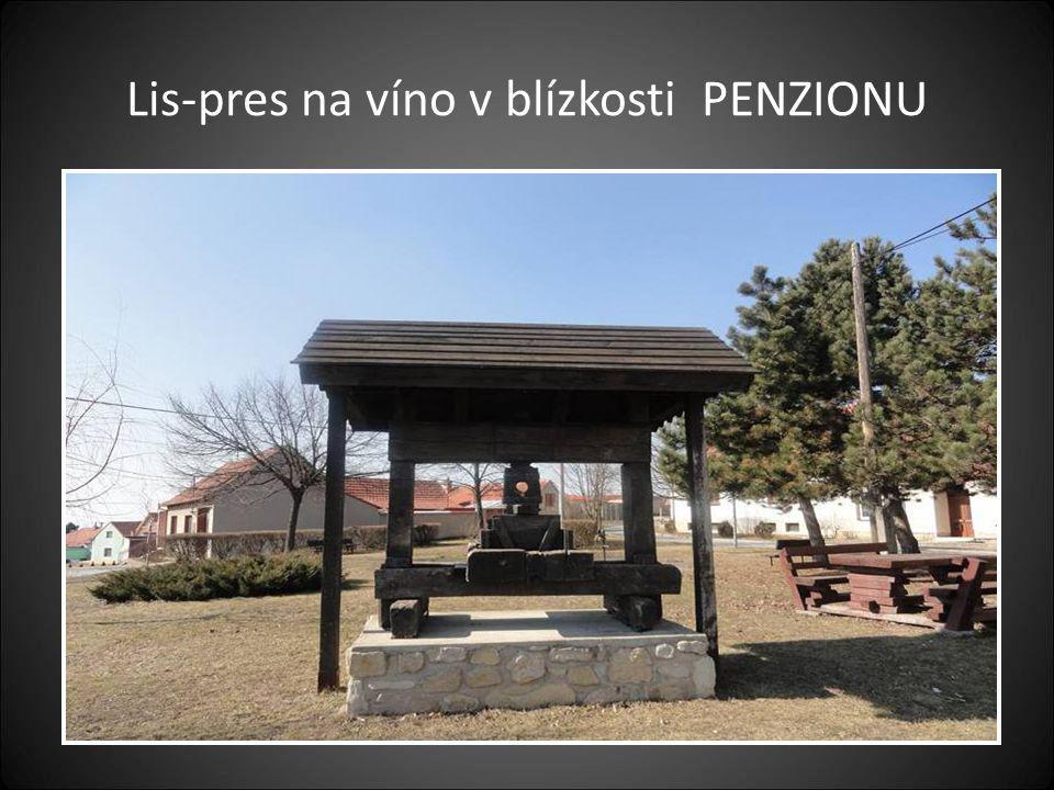Naše druhé zastavení bylo v Obci- Vrbice