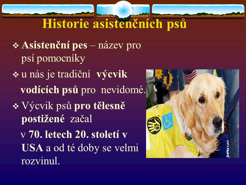 Historie asistenčních psů  Asistenční pes – název pro psí pomocníky  u nás je tradiční výcvik vodících psů pro nevidomé.  Výcvik psů pro tělesně po