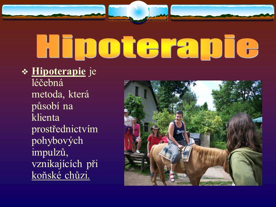  Hipoterapie je léčebná metoda, která působí na klienta prostřednictvím pohybových impulzů, vznikajících při koňské chůzi.