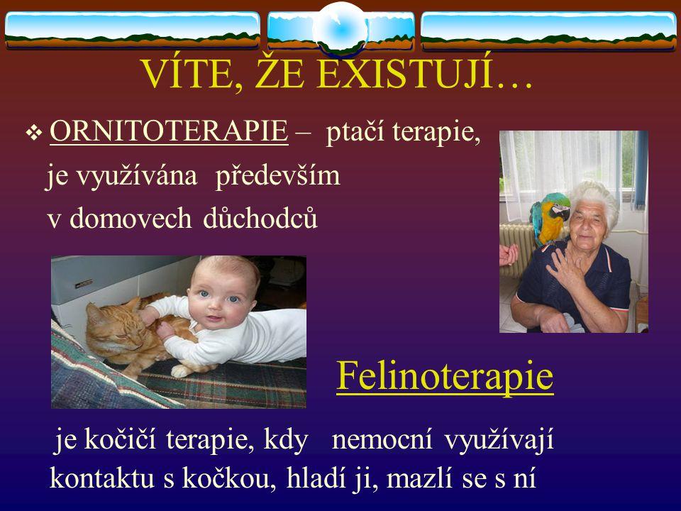 VÍTE, ŽE EXISTUJÍ…  ORNITOTERAPIE – ptačí terapie, je využívána především v domovech důchodců Felinoterapie je kočičí terapie, kdy nemocní využívají kontaktu s kočkou, hladí ji, mazlí se s ní