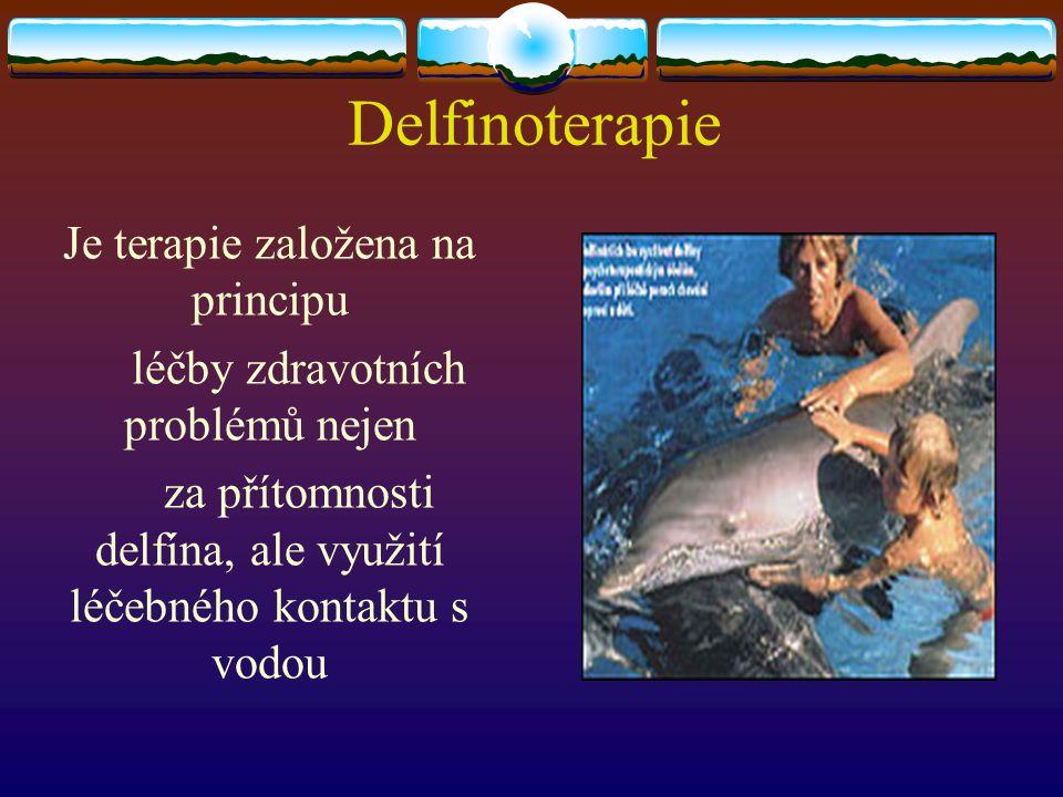 Delfinoterapie Je terapie založena na principu léčby zdravotních problémů nejen za přítomnosti delfína, ale využití léčebného kontaktu s vodou