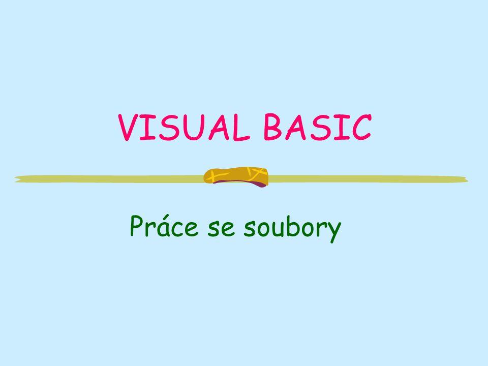 VISUAL BASIC Práce se soubory