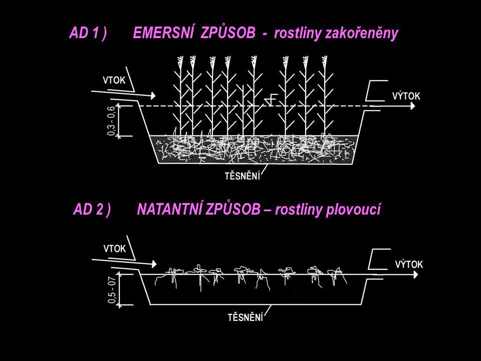 AD 1 ) EMERSNÍ ZPŮSOB - rostliny zakořeněny AD 2 ) NATANTNÍ ZPŮSOB – rostliny plovoucí