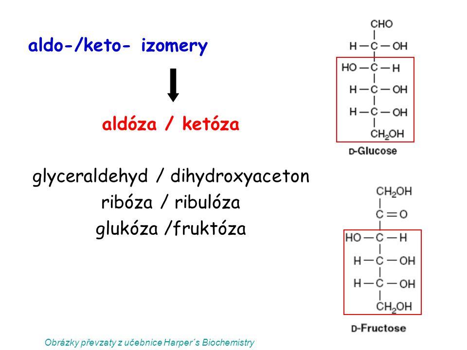 aldo-/keto- izomery aldóza / ketóza glyceraldehyd / dihydroxyaceton ribóza / ribulóza glukóza /fruktóza Obrázky převzaty z učebnice Harper´s Biochemis