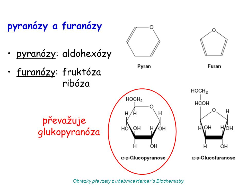 pyranózy a furanózy pyranózy: aldohexózy furanózy: fruktóza ribóza převažuje glukopyranóza Obrázky převzaty z učebnice Harper´s Biochemistry