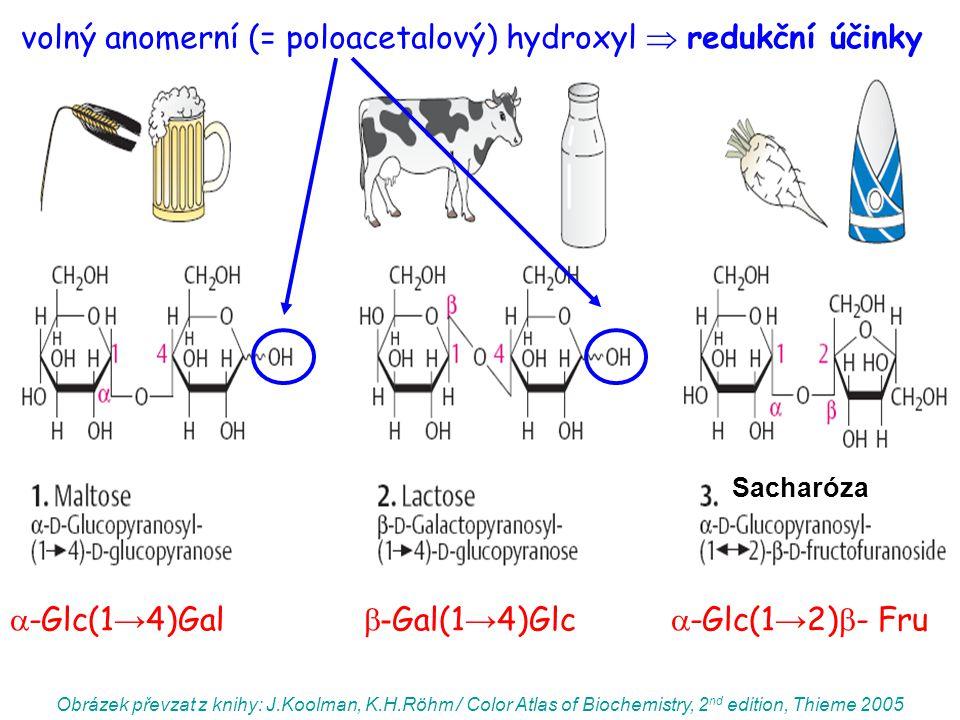 Obrázek převzat z knihy: J.Koolman, K.H.Röhm / Color Atlas of Biochemistry, 2 nd edition, Thieme 2005  -Glc(1 → 4)Gal  - Gal(1 → 4)Glc  -Glc(1 → 2)