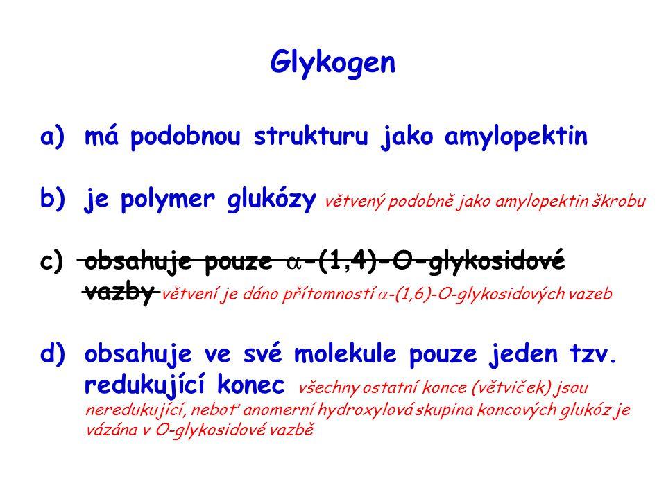 Glykogen a)má podobnou strukturu jako amylopektin b)je polymer glukózy větvený podobně jako amylopektin škrobu c)obsahuje pouze  -(1, 4)-O-glykosidov