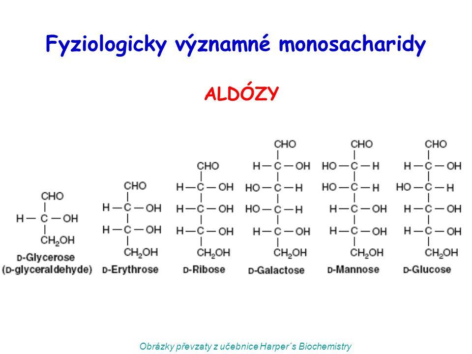 Fyziologicky významné monosacharidy ALDÓZY Obrázky převzaty z učebnice Harper´s Biochemistry