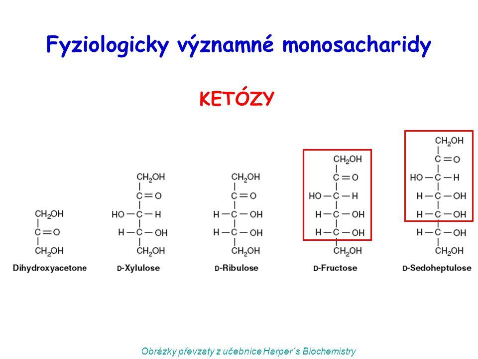 Fyziologicky významné monosacharidy KETÓZY Obrázky převzaty z učebnice Harper´s Biochemistry