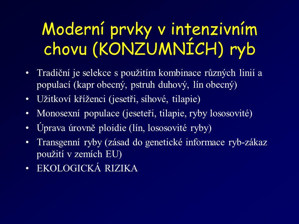 Moderní prvky v intenzivním chovu (KONZUMNÍCH) ryb Tradiční je selekce s použitím kombinace různých linií a populací (kapr obecný, pstruh duhový, lín obecný) Užitkoví kříženci (jesetři, síhové, tilapie) Monosexní populace (jeseteři, tilapie, ryby lososovité) Úprava úrovně ploidie (lín, lososovité ryby) Transgenní ryby (zásad do genetické informace ryb-zákaz použití v zemích EU) EKOLOGICKÁ RIZIKA