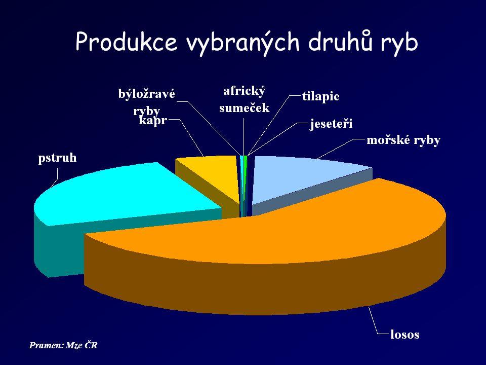 Produkční systémy Produkce ryb v rybničních podmínkách –Nádrže přírodního charakteru s výskytem přirozené potravy –Extenzivní, polointenzivní, intenzivní chov –Kapr, býložravé druhy ryb, ryby dravé, lín (doplňkové druhy ryb) Produkce ryb v podmínkách speciálních zařízení intenzivních chovů –Produkční zařízení různého typu, zpravidla bez významného výskytu přirozené potravy, často s řízeným prostředím.