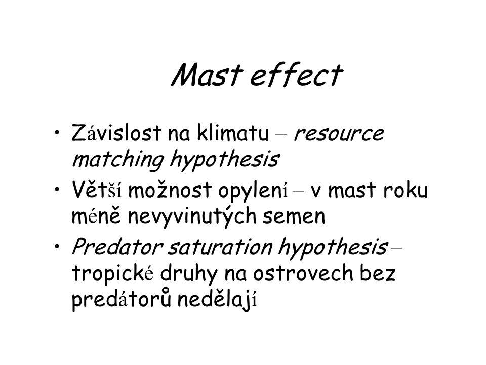 Mast effect Z á vislost na klimatu – resource matching hypothesis Vět ší možnost opylen í – v mast roku m é ně nevyvinutých semen Predator saturation