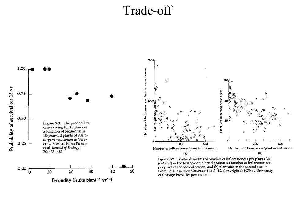 Alokace do orgánů příjmu Rostliny – příjem CO 2 a záření listy vs.