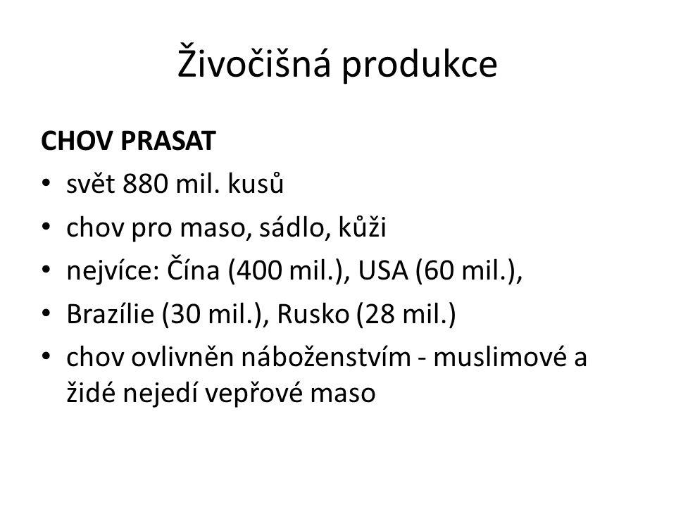 Živočišná produkce CHOV PRASAT svět 880 mil. kusů chov pro maso, sádlo, kůži nejvíce: Čína (400 mil.), USA (60 mil.), Brazílie (30 mil.), Rusko (28 mi