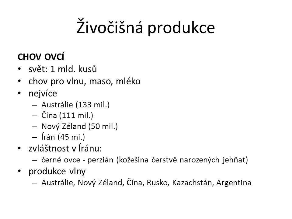 Živočišná produkce CHOV OVCÍ svět: 1 mld. kusů chov pro vlnu, maso, mléko nejvíce – Austrálie (133 mil.) – Čína (111 mil.) – Nový Zéland (50 mil.) – Í