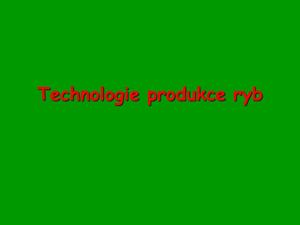 Technologie produkce ryb