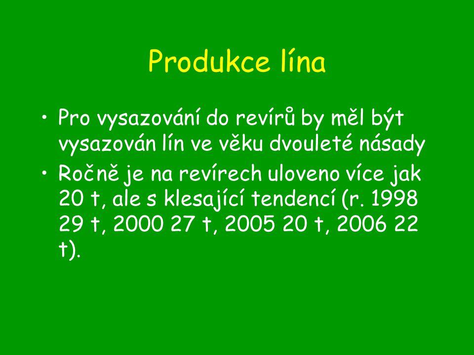 Produkce lína Pro vysazování do revírů by měl být vysazován lín ve věku dvouleté násady Ročně je na revírech uloveno více jak 20 t, ale s klesající tendencí (r.