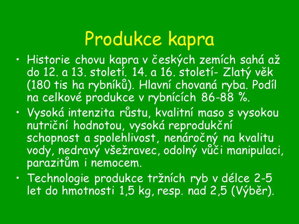 Produkce štiky Charakteristika, požadavky na podmínky prostředí Rychlost růstu –Š r 3 – 4 cm (8-12 cm) –Š 1 100 – 200 g (500 g) –Š 2 1 000 g