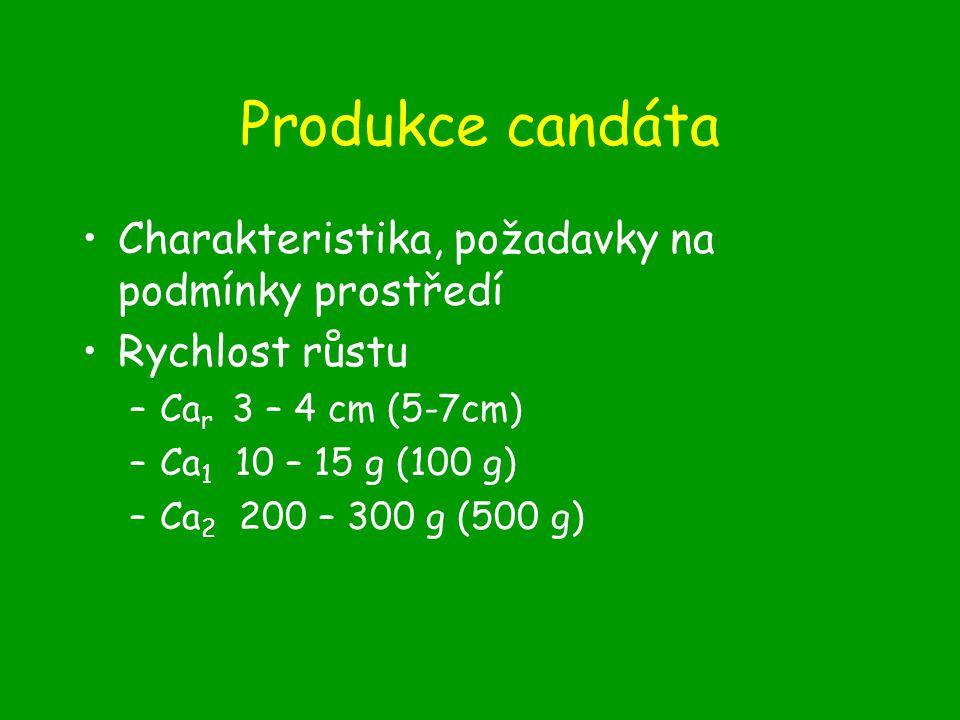 Produkce candáta Charakteristika, požadavky na podmínky prostředí Rychlost růstu –Ca r 3 – 4 cm (5-7cm) –Ca 1 10 – 15 g (100 g) –Ca 2 200 – 300 g (500 g)