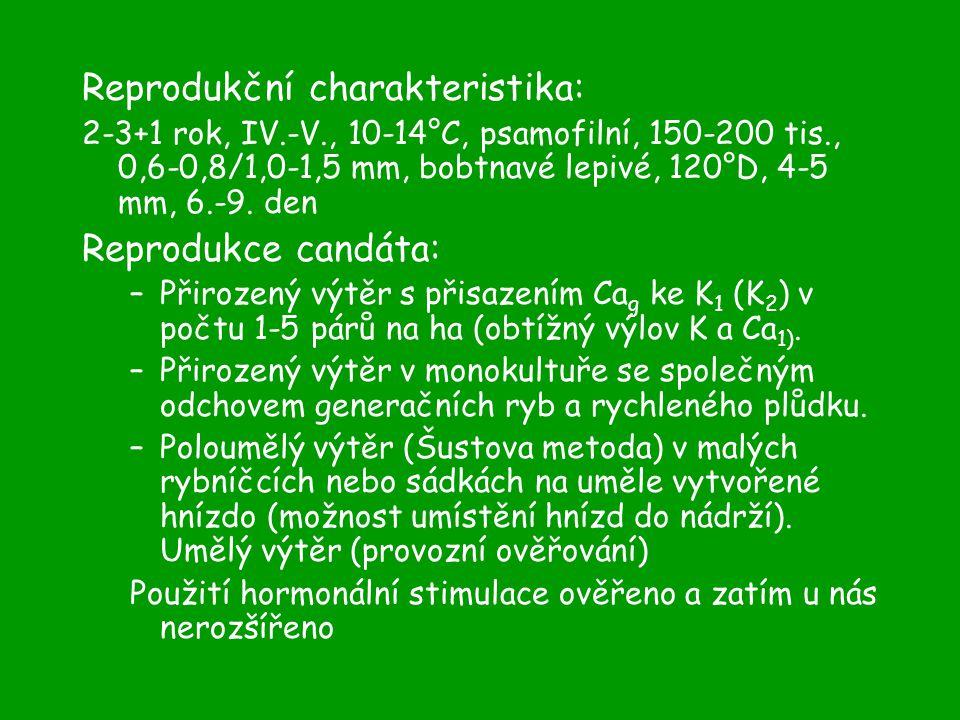 Reprodukční charakteristika: 2-3+1 rok, IV.-V., 10-14°C, psamofilní, 150-200 tis., 0,6-0,8/1,0-1,5 mm, bobtnavé lepivé, 120°D, 4-5 mm, 6.-9.
