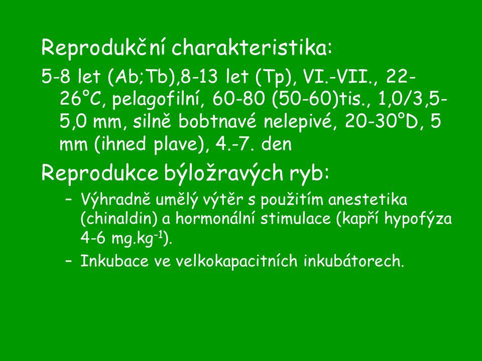 Reprodukční charakteristika: 5-8 let (Ab;Tb),8-13 let (Tp), VI.-VII., 22- 26°C, pelagofilní, 60-80 (50-60)tis., 1,0/3,5- 5,0 mm, silně bobtnavé nelepivé, 20-30°D, 5 mm (ihned plave), 4.-7.