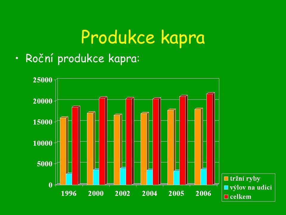 Odchov plůdku: –Při přelovení Š r (pod hrází a vysbírat loviště), přisazení ke K 1 nebo K 2 (přežití až 50 % při dostatku potravy a správném vysazení) 400- 1000 ks.ha -1, úroveň přežití a dosažená velikost vychází z potravních podmínek a nabídky úkrytů.