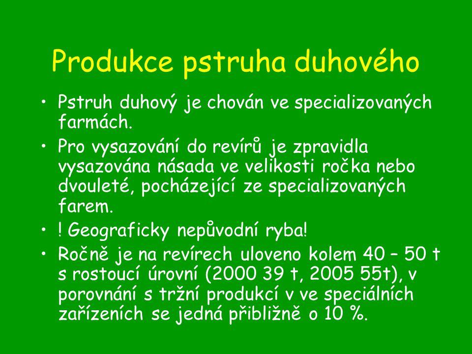 Produkce pstruha duhového Pstruh duhový je chován ve specializovaných farmách.