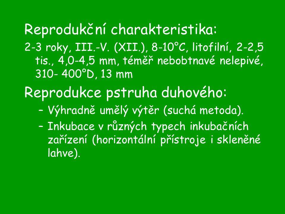 Reprodukční charakteristika: 2-3 roky, III.-V.
