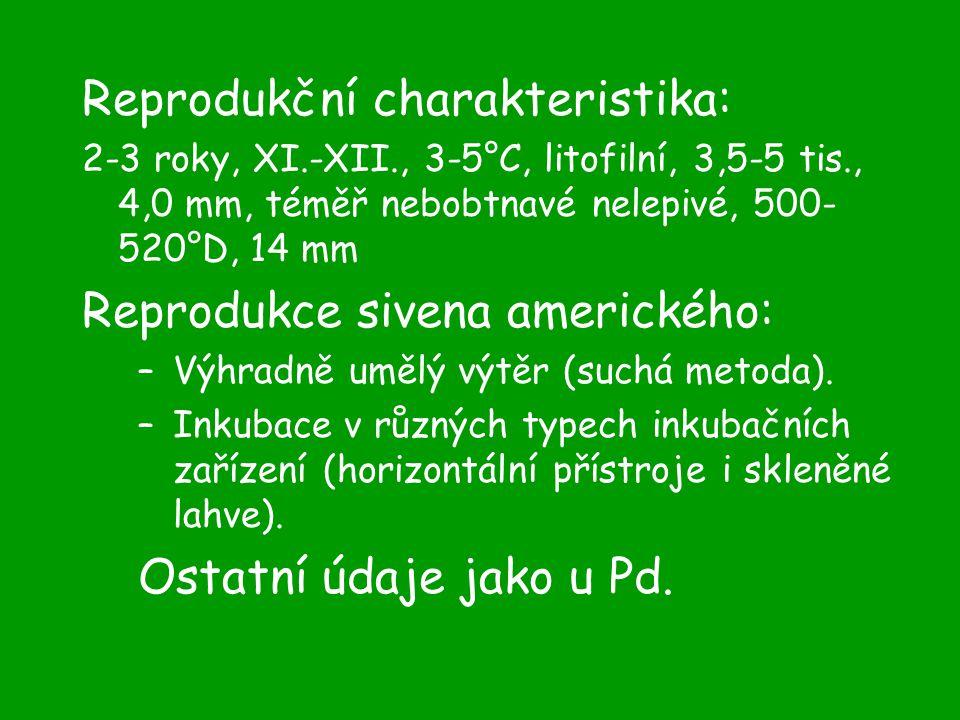 Reprodukční charakteristika: 2-3 roky, XI.-XII., 3-5°C, litofilní, 3,5-5 tis., 4,0 mm, téměř nebobtnavé nelepivé, 500- 520°D, 14 mm Reprodukce sivena amerického: –Výhradně umělý výtěr (suchá metoda).