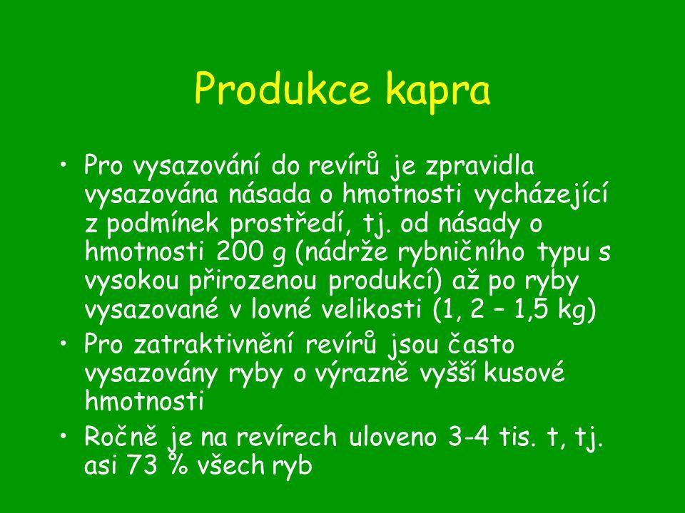 Produkce kapra Charakteristika, požadavky na podmínky prostředí Rychlost růstu –K r 0,5 – 4g –K 1 30 g (5-150 g) –K 2 200 – 800 g (1500 g)