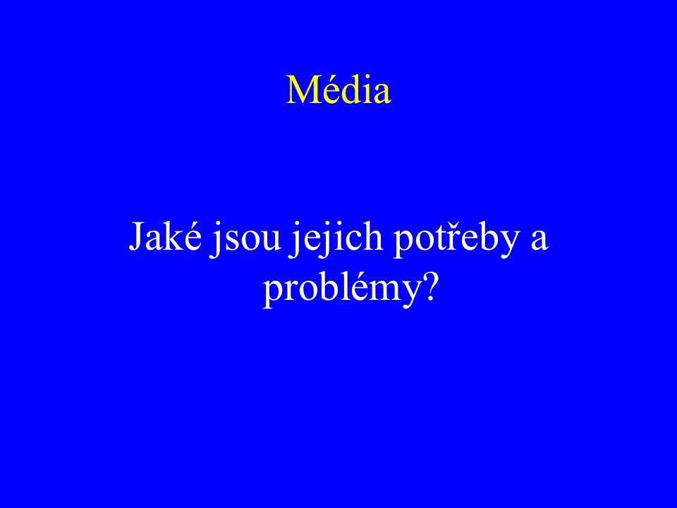 Média Jaké jsou jejich potřeby a problémy?