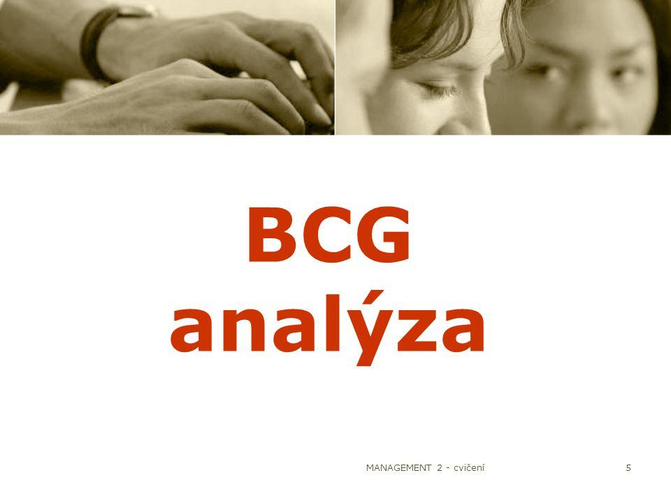 MANAGEMENT 2 - cvičení5 BCG analýza