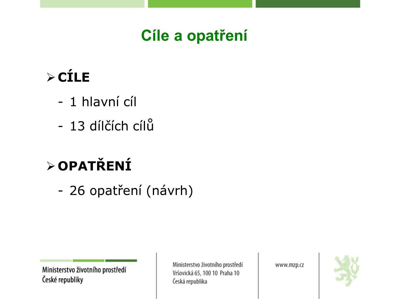Cíle a opatření  CÍLE -1 hlavní cíl -13 dílčích cílů  OPATŘENÍ -26 opatření (návrh)