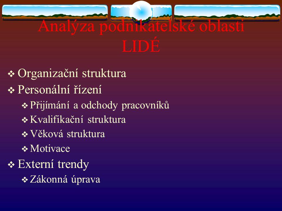Analýza podnikatelské oblasti LIDÉ  Organizační struktura  Personální řízení  Přijímání a odchody pracovníků  Kvalifikační struktura  Věková stru