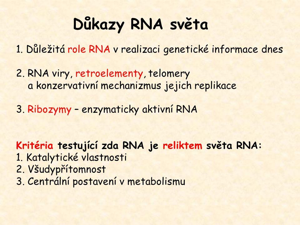 Důkazy RNA světa 1. Důležitá role RNA v realizaci genetické informace dnes 2. RNA viry, retroelementy, telomery a konzervativní mechanizmus jejich rep