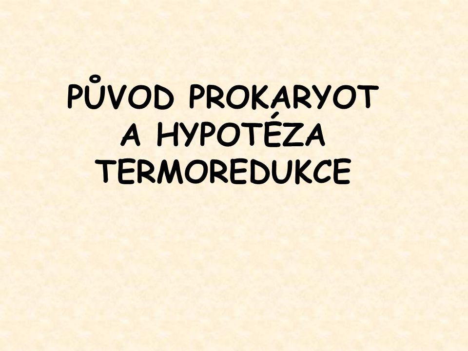PŮVOD PROKARYOT A HYPOTÉZA TERMOREDUKCE